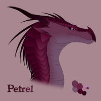 Petrel 2.0 by xTheDragonRebornx