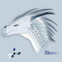 Storm by xTheDragonRebornx