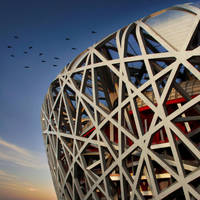 the birds nest by teemoh
