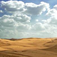 desert walkers by teemoh