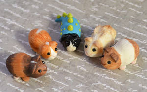 Five New Guinea Pigs by insanable