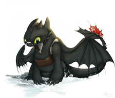 Toothless . Snow by ISpyrq