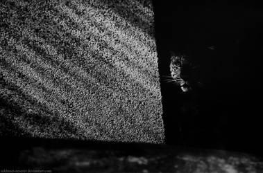 Ghost. by sekhmet-neseret
