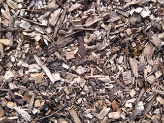 sawdust by synesthesea