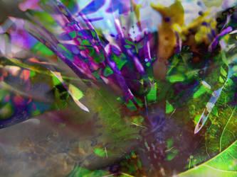 heart/dancer by synesthesea