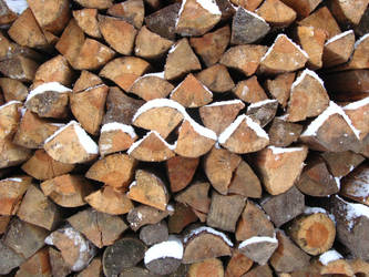 stack of fuelwood by synesthesea