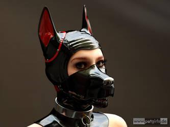 Puppy (Var.II) by My-Rho