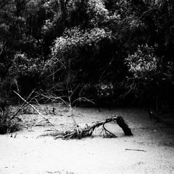 Burial by mehrmeer