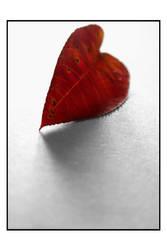 My fallen heart. by Anoya