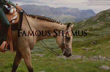 Western Horse 1 by FamousShamus109