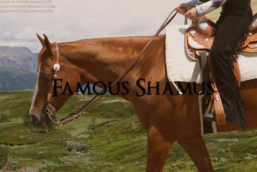 Western Horse 2 by FamousShamus109