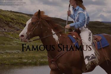 Western Paint by FamousShamus109