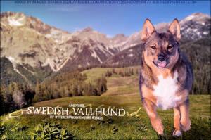 Sweedish Vallund IE by FamousShamus109