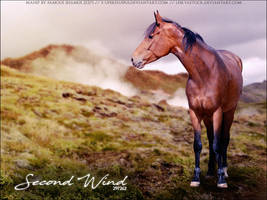Second Wind by FamousShamus109