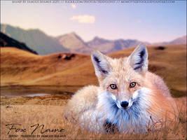 Fox01 by FamousShamus109