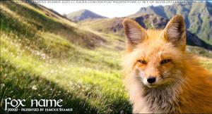 Fox02 by FamousShamus109