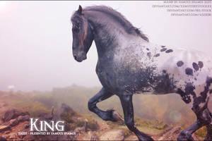 King by FamousShamus109