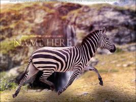 Zebra 01 by FamousShamus109