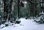 Winter Landscape by Greyguardian