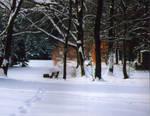 Winter Landscape II by Greyguardian