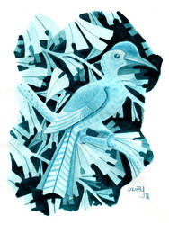 Hornbill in turquoise by yeyra