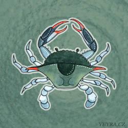 Blue crab by yeyra
