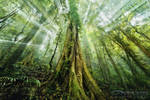 Mystic Jungle by DrewHopper