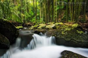 Curtis Falls Cascades by DrewHopper