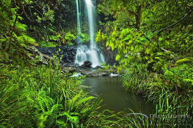 Green Oasis by DrewHopper