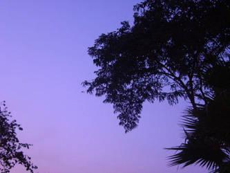 purple haze by halloweenpumpkin