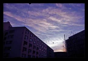 :: Kallio :: by synergia
