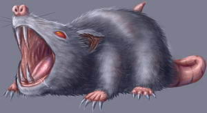 (Supposed to be) Giant Rat by nisamerica