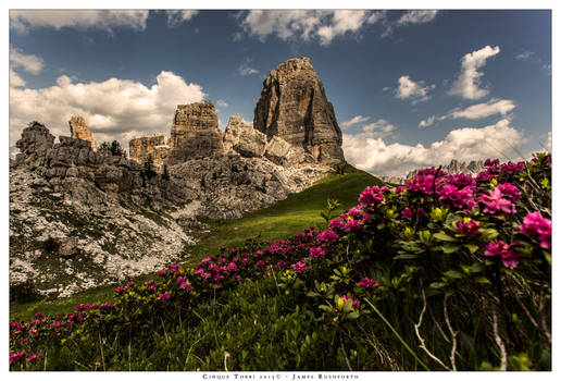 Cinque Torri in bloom by JamesRushforth