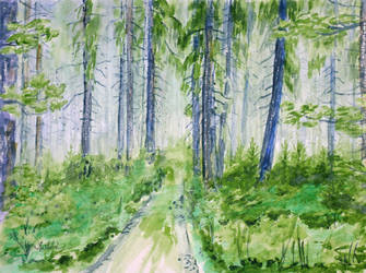 Spring's forest by danuta50