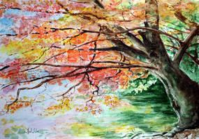 Autum tree by danuta50