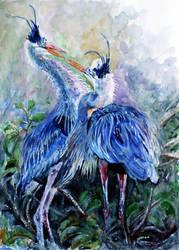 wading bird by danuta50