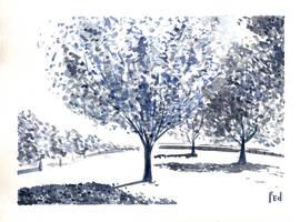 Trees by Joliet82