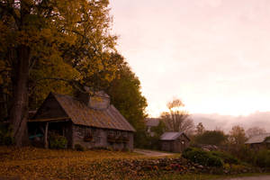 Farm by Pandora-Effekt