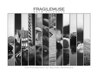 2016 Photography Calendar by fragilemuse-org