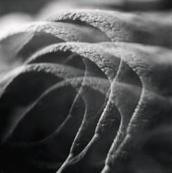 Socket by fragilemuse-org