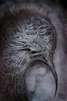 Kiwi by RuslanKadiev