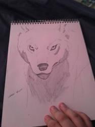 Wolf drawing  by Ninjaturtlegirl1