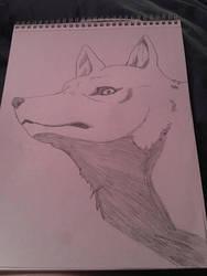 Another wolf drawing  by Ninjaturtlegirl1