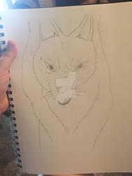 Princess mononoke wolf drawing attempt #1  by Ninjaturtlegirl1