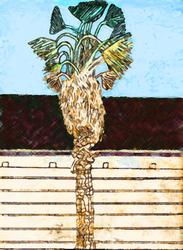Shaggy Palm Tree by BAHZUT