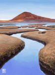 Scottish landscapes - Rodel Saltmarsh by muzski