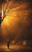 Finding Neverland 5 by onurkorkmaz