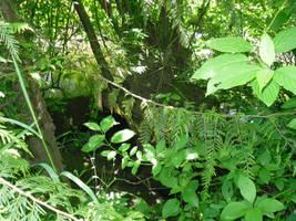 Stream beyond the Brush by GeneralDurandal