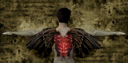 Fallen Angel by iwashinblo0d
