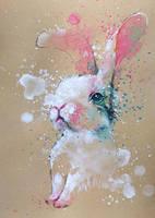 Bunny by tilenti